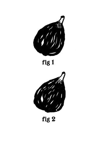 2 figs