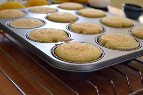 bergamot cupcakes baking tray