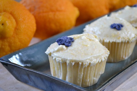 bergamot cupcakes