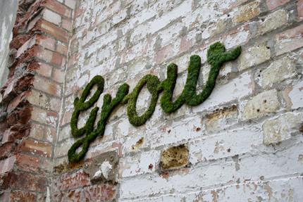grow, moss graffiti